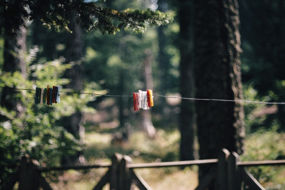 devangana mishra clothesline poem